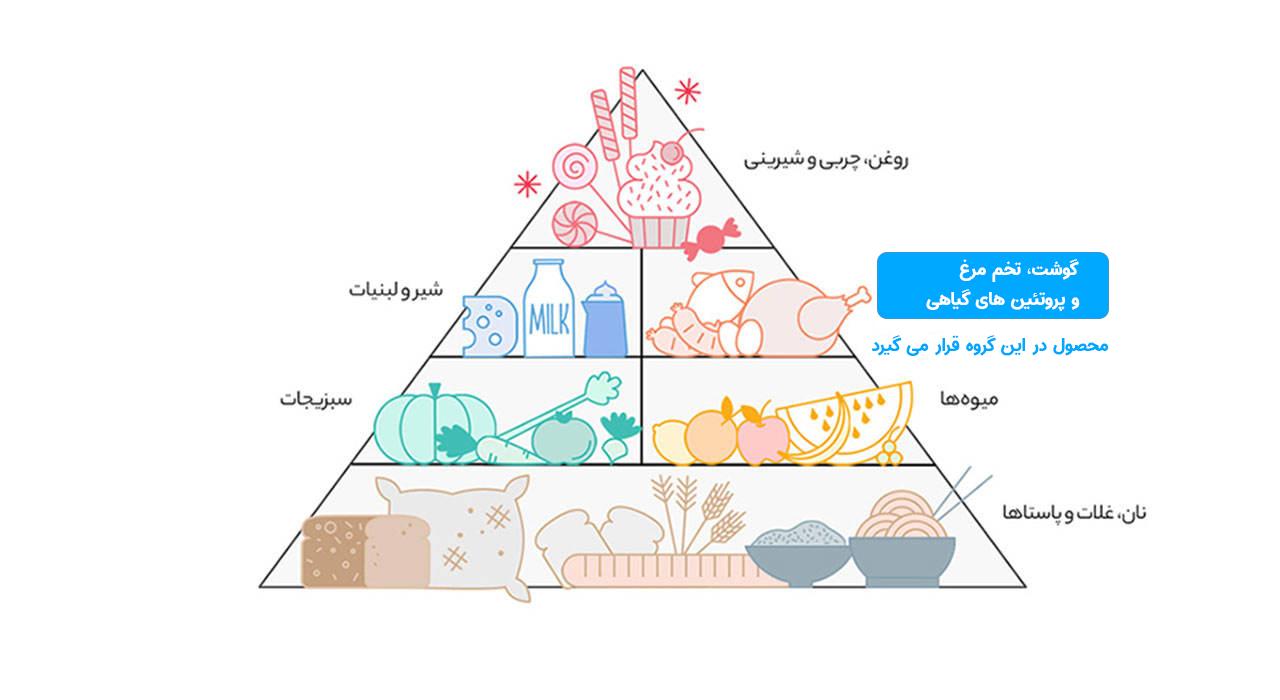 هرم غذایی آبزیان